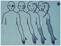 aura agopuntura torino