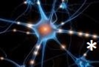 neurotrasmettitori2